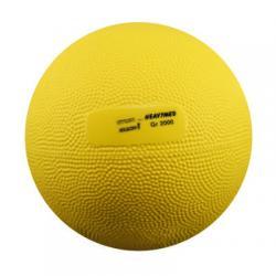 21391 - Medecine Ball 2 kg