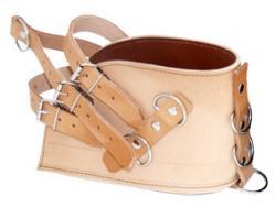 quadriceps shoe