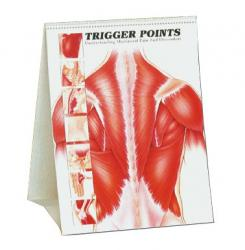 trigger points book