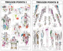 trigger points wandplaten